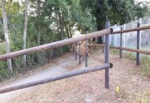Ein Blick hinab auf den Lieserpfad mit einem Zaun rechts und links aus Holz.