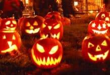 leuchtende Kürbisse mit gruseligen Fratzen bei Nacht als Symbolbild für die Halloweenparty im Lagerhaus des Schreckens.