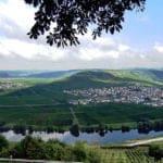 Dein Blick auf Moselschleife bei Leiwen/Trittenheim bei herrlichstem Sonnenschein.
