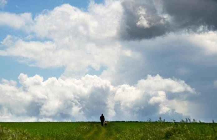 Wetter. Feldspaziergang bei wolkigem Wetter